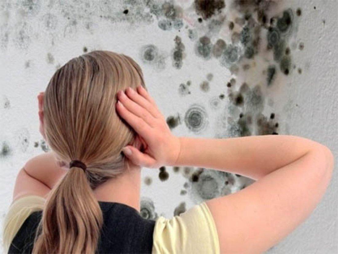 Как убрать плесень с потолка — Чисто в доме