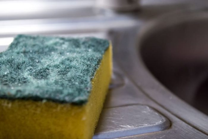 грязная губка для посуды
