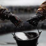 Откуда берется нефть на Земле