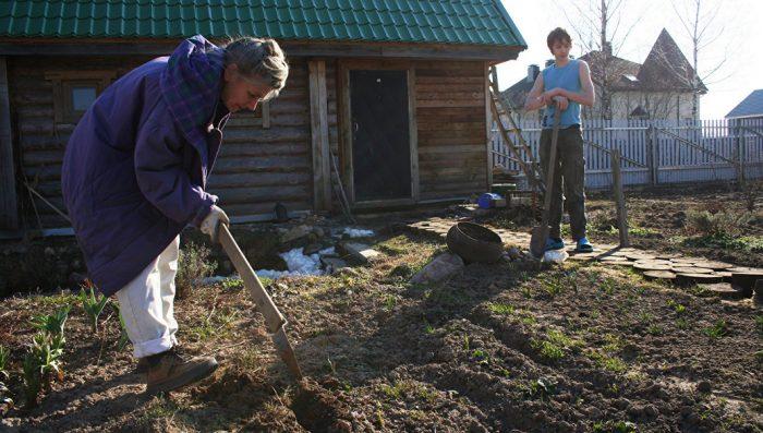 Как дачники могут сэкономить в следующем году на земельном налоге