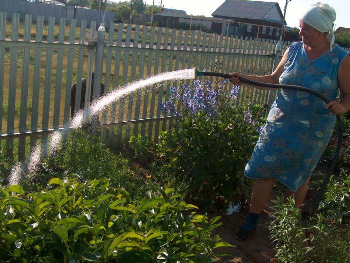 Правила пользования водой для дачников в 2019 году