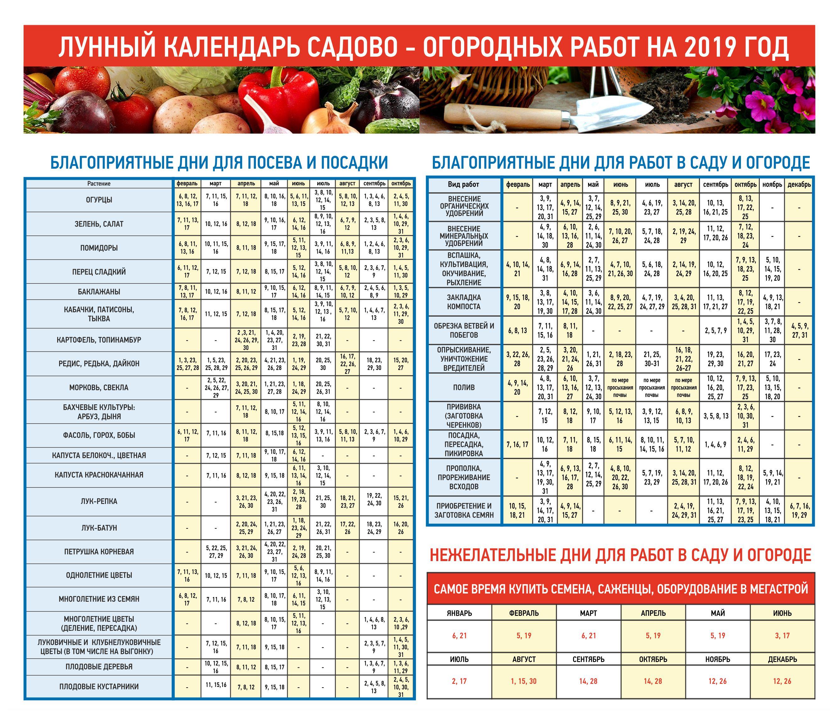 Лунный календарь садово-огородных работ на 2019 год