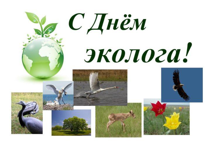 всемирный день окружающей среды день эколога