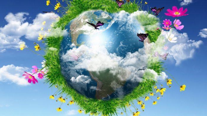 день эколога в России какого числа