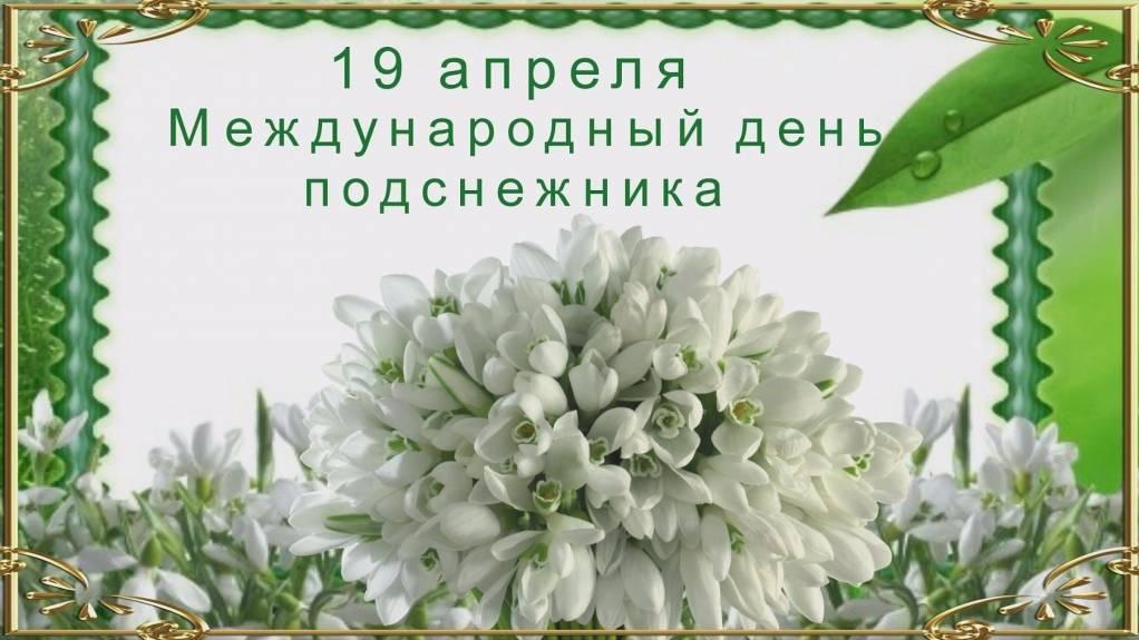 День подснежника в россии открытка