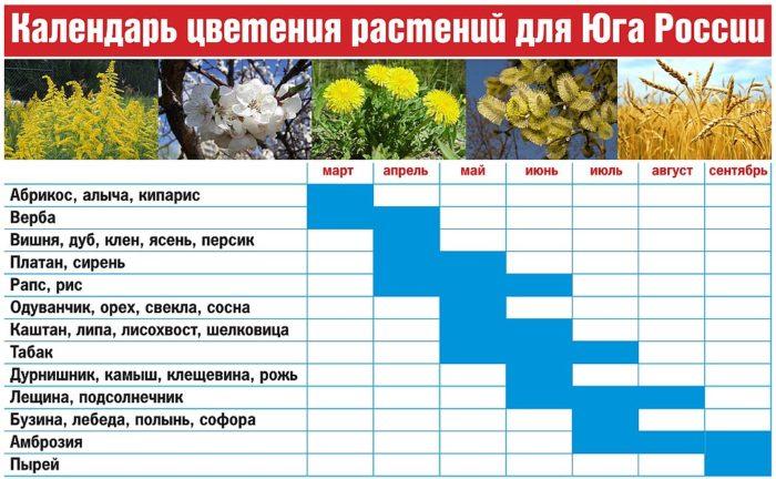 Календарь цветения для аллергиков