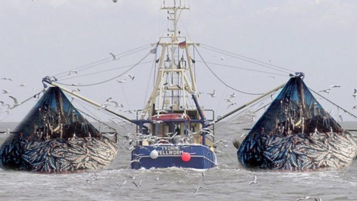 какого числа день рыбака в России