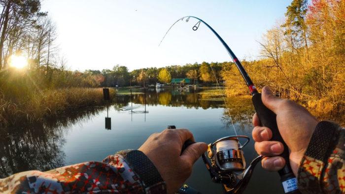 картинки день рыбака бесплатно