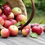 яблочный спас картинки